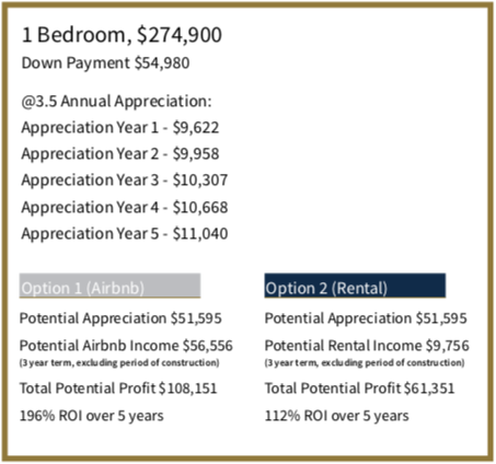 The Niagara - One Bedroom Investment Projection - Yossi Kaplan