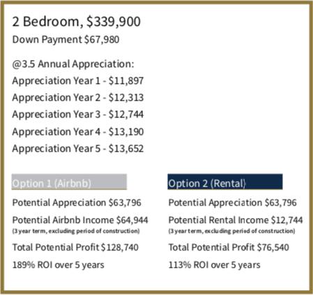 The Niagara - Two Bedroom Projection - Sales Yossi Kaplan
